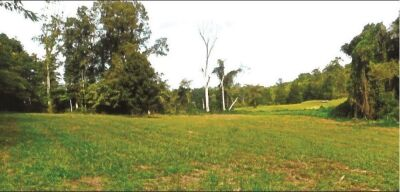 Tract 2 - 5.12 Acres on Mill Creek Road